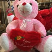 18 in love bear special